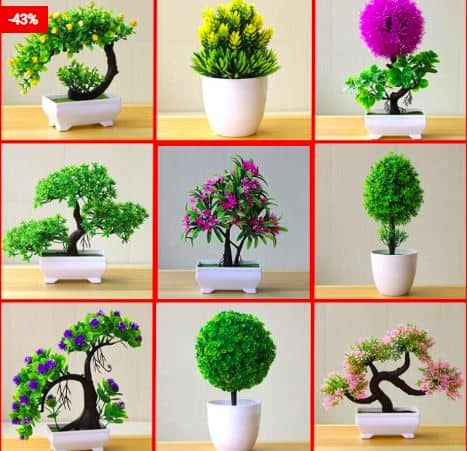 Top 4 Faux Plants To Decorate Your House